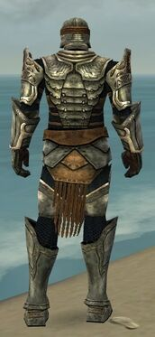 Warrior Sunspear Armor M gray back.jpg