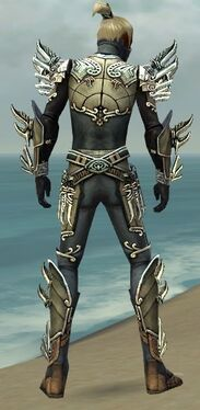 Assassin Asuran Armor M gray back.jpg