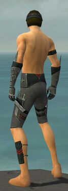 Assassin Canthan Armor M gray arms legs back.jpg