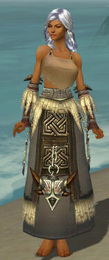 Dervish Norn Armor F gray arms legs front.jpg