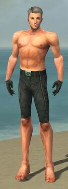 Mesmer Elite Rogue Armor M gray arms legs front.jpg