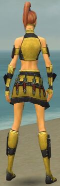 Assassin Elite Canthan Armor F dyed back.jpg