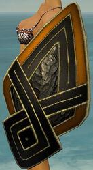 Asuran Shield.jpg