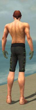 Mesmer Shing Jea Armor M gray arms legs back.jpg