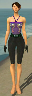 Mesmer Tyrian Armor F gray arms legs front.jpg