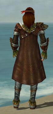 Ranger Druid Armor M gray back.jpg