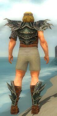 Warrior Luxon Armor M gray chest feet back.jpg