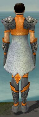 Elementalist Stoneforged Armor M dyed back.jpg