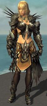 Jora Armor Deldrimor Front.jpg