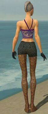 Mesmer Elite Elegant Armor F gray arms legs back.jpg
