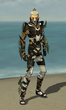 Assassin Elite Kurzick Armor M dyed front.jpg