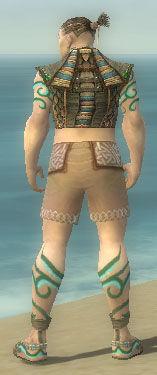 Monk Elite Luxon Armor M gray chest feet back.jpg