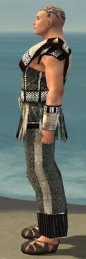 Monk Elite Sunspear Armor M gray side.jpg