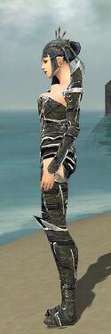 Necromancer Elite Profane Armor F gray side.jpg