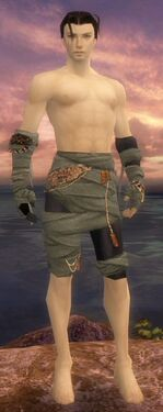 Ritualist Ancient Armor M gray arms legs front.jpg