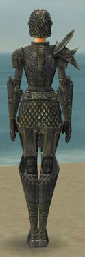 Warrior Elite Platemail Armor F gray back.jpg