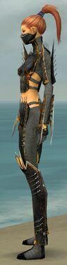 Assassin Exotic Armor F gray side.jpg