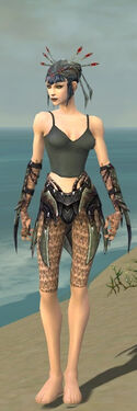 Necromancer Elite Cabal Armor F gray arms legs front.jpg