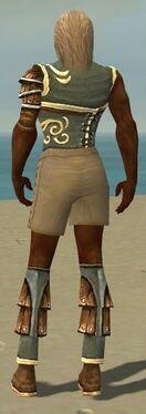 Ranger Shing Jea Armor M gray chest feet back.jpg