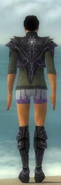 Elementalist Elite Stormforged Armor M gray chest feet back.jpg