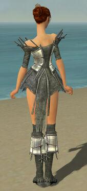 Elementalist Primeval Armor F gray chest feet back.jpg