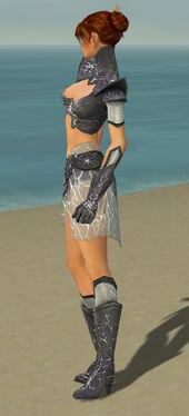 Elementalist Stormforged Armor F gray side.jpg
