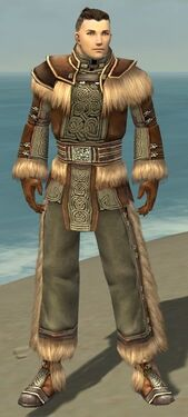 Monk Norn Armor M gray front.jpg