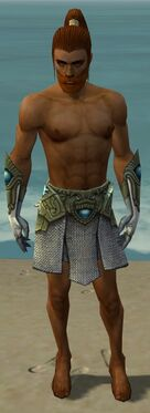 Paragon Monument Armor M gray arms legs front.jpg