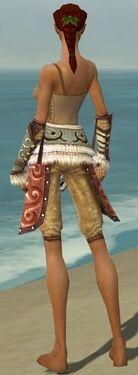 Ranger Canthan Armor F gray arms legs back.jpg