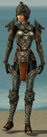 Warrior Elite Canthan Armor F gray front.jpg