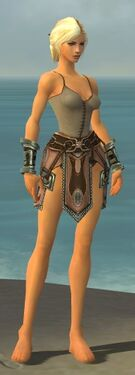 Warrior Gladiator Armor F gray arms legs front.jpg