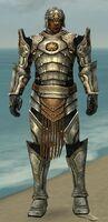 Warrior Sunspear Armor M gray front.jpg