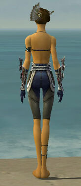 Assassin Norn Armor F gray arms legs back.jpg