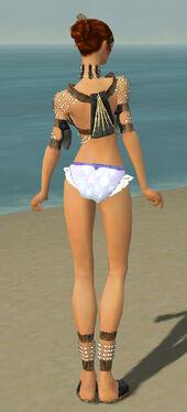 Elementalist Sunspear Armor F gray chest feet back.jpg