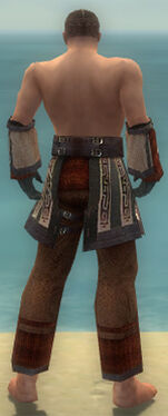 Monk Ancient Armor M gray arms legs back.jpg
