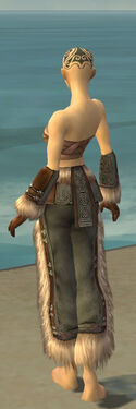 Monk Norn Armor F gray arms legs back.jpg