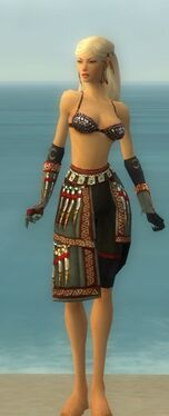 Ritualist Elite Canthan Armor F gray arms legs front.jpg