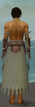 Dervish Sunspear Armor M gray arms legs back.jpg