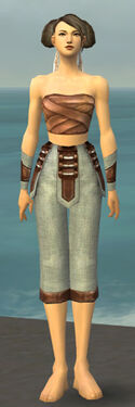Monk Censor Armor F gray arms legs front.jpg