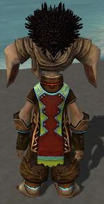 Vekk Armor Asuran Back.jpg