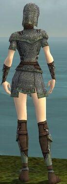 Warrior Tyrian Armor F gray back.jpg