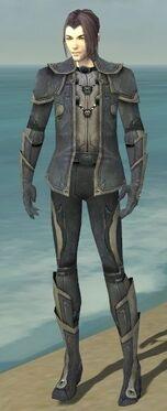 Elementalist Ascalon Armor M gray front.jpg