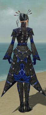 Necromancer Elite Cultist Armor F dyed back.jpg