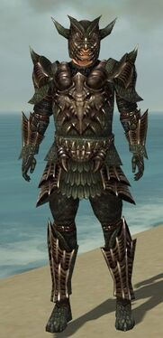 Warrior Elite Dragon Armor M gray front.jpg