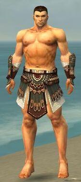 Warrior Vabbian Armor M gray arms legs front.jpg