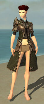 Leather Long Coat F gray front.jpg