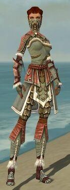 Ranger Elite Canthan Armor F gray front.jpg