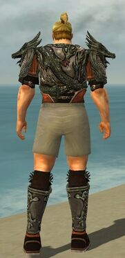 Warrior Elite Canthan Armor M gray chest feet back.jpg
