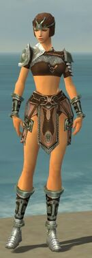 Warrior Gladiator Armor F gray front.jpg