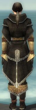 Elementalist Ancient Armor M dyed back.jpg